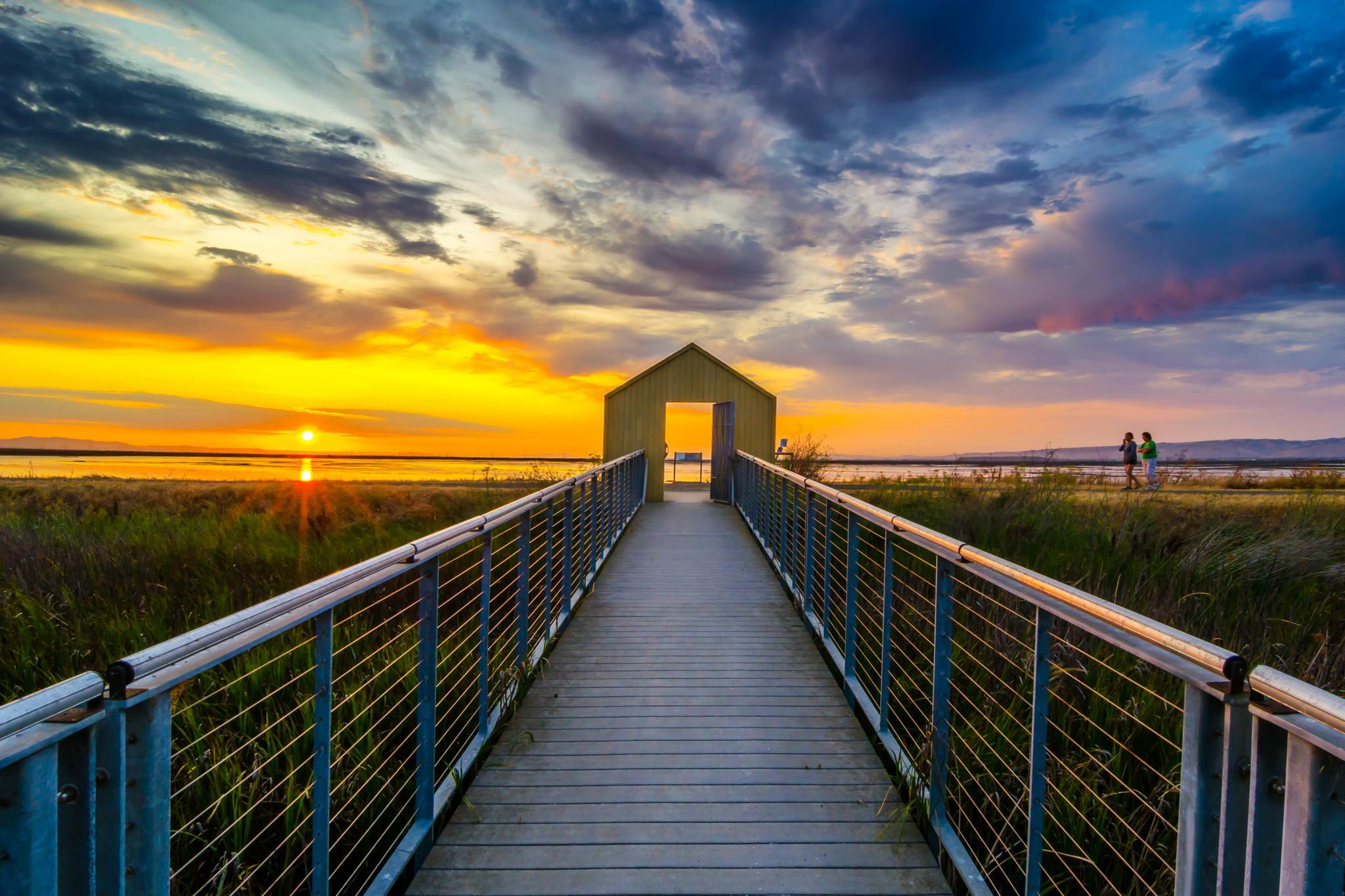 Sunset colors on Alviso Marina County Park   County park, Sunset colors, Park