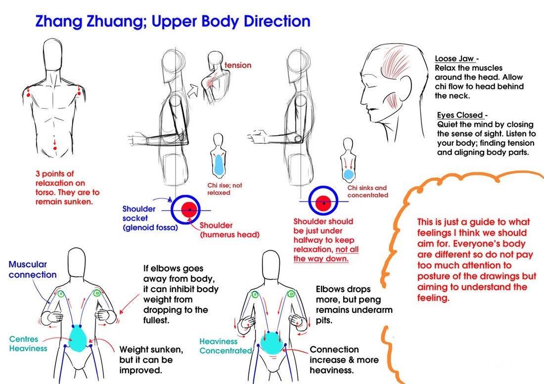 Zhang Zhuang: Upper body direction