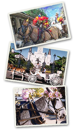 ROYAL CARRIAGES, INC.  America's oldest carriage company. Tours of the French Quarter, St. Louis Cemetery, Garden District, and ghost/mystery.