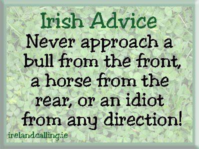 Good Advice Irish Quotes Quotes Funny Quotes