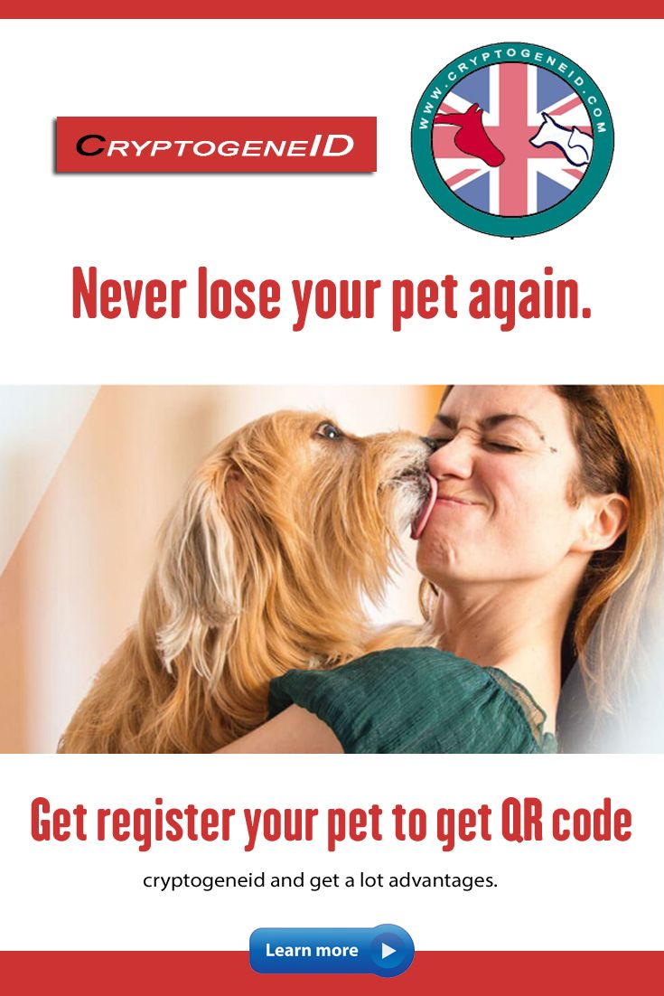 Get register your pet to get QR code (cryptogeneid and get a lot advantages. Always ask for cryptogeneid for the pet as it helps to maintain animal health records. We are looking for agents to promote this service. Get DNA profile of your animal! If you lose your animal, we help to search it with giving rewards.  #dogsofinstagram #dogs #dogstagram #dogsofinsta #dogsofig #dogsitting #dogslife #dogsofinstaworld #dogscorner #dogsofinstgram #dogsandpals #dogslover #dogstyle #dogsarefamily #dogselfie
