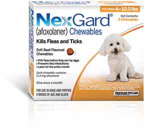 About A Delicious Beef Flavored Chew That Dogs Love Nexgard Afoxolaner Flea And Tick Frontline Plus For Cats Siberian Cats For Sale