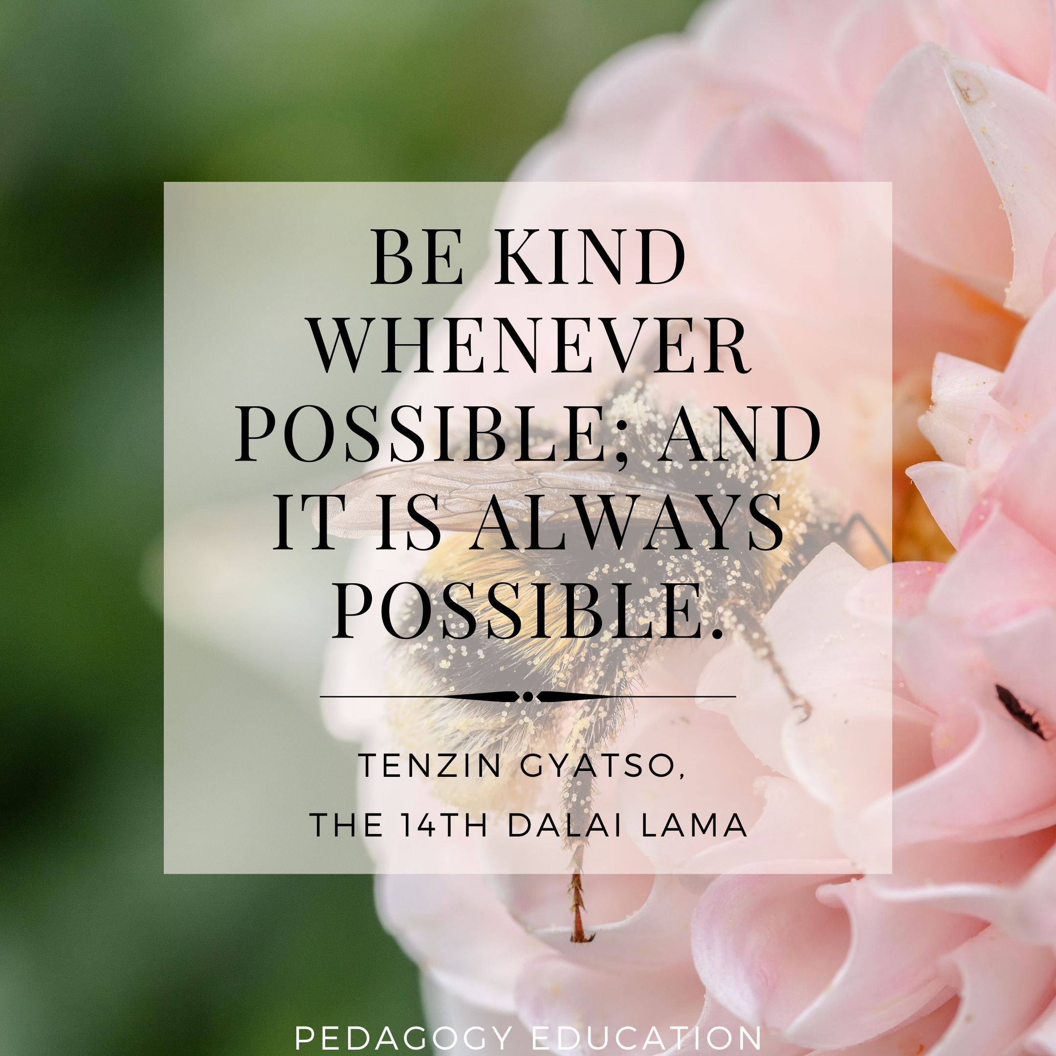 Be Kind Nursing in 2020 Continuing education for