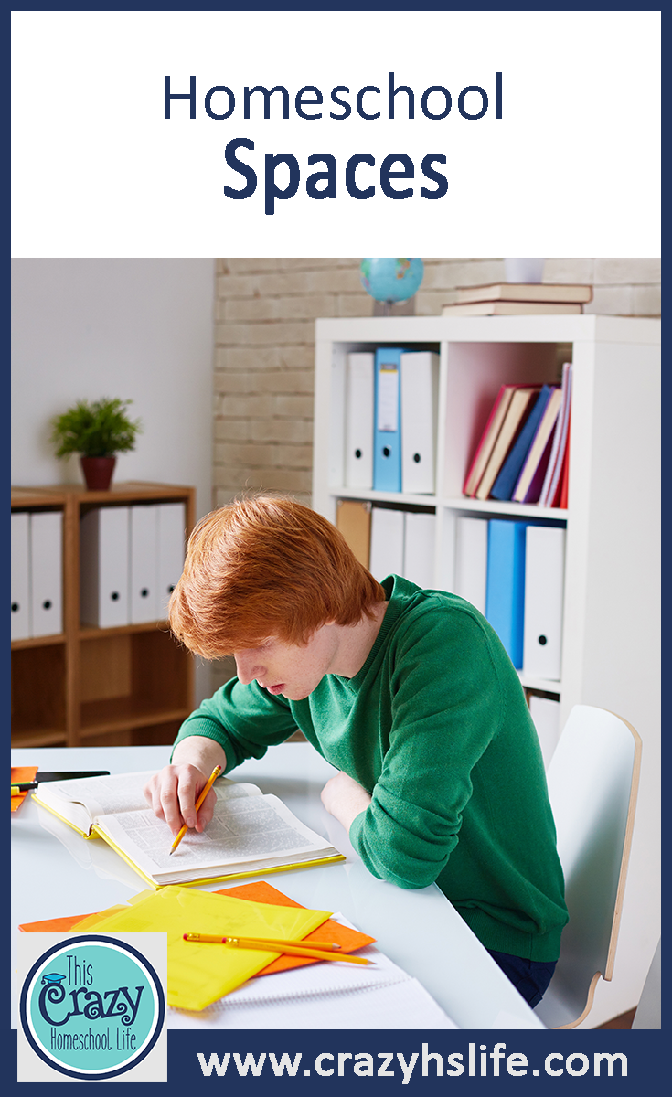 Whether you're 'doing' school at the dining room table or in a dedicated classroom, this board is all about inspiring the design of your homeschool space.