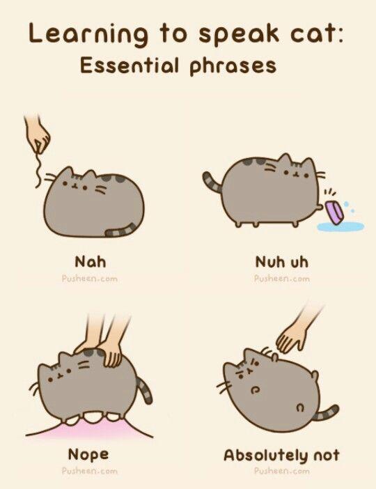 Pin By Sonia Ahmed On Pusheen Pusheen Cute Pusheen Cat Funny