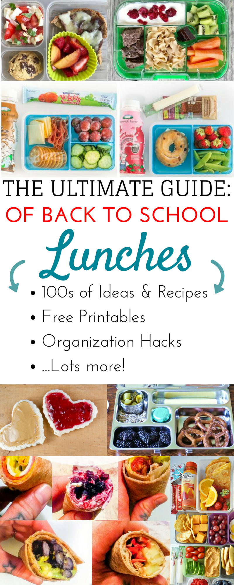 Better Kids School Lunch Ideas to for the Whole Year + Back to School Organization