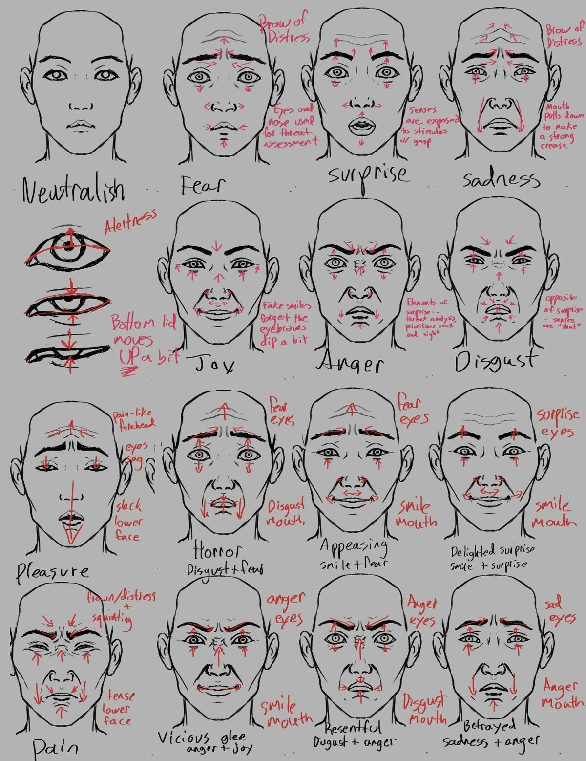 Reference Emotions And Facial Expression From Winter Pubdraw
