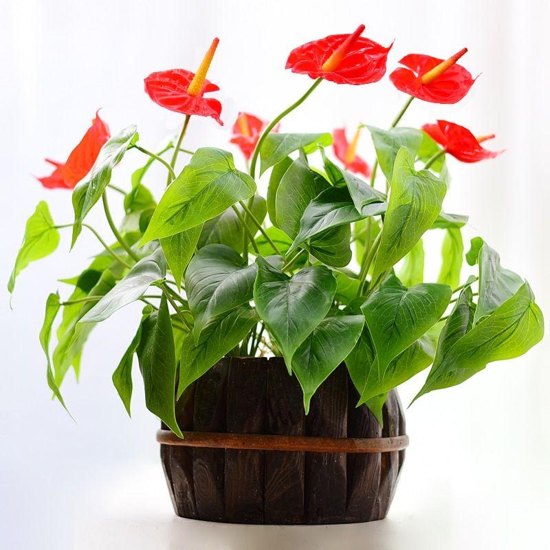 Find More Artificial Dried Flowers Information About Anthurium Bouquet 18 Leav Anthurium Bouquet Wedding Table Flowers