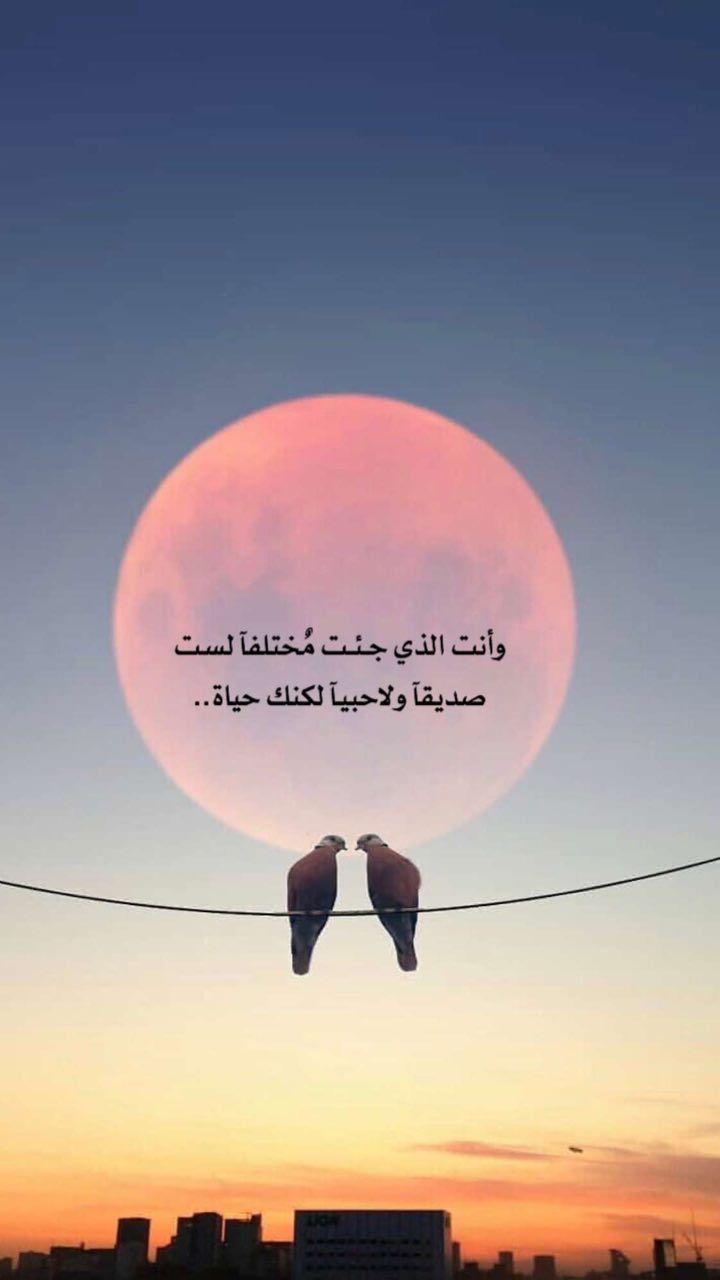 أحبك إنت نور عيوني Photo Quotes Arabic Quotes Fabulous Quotes