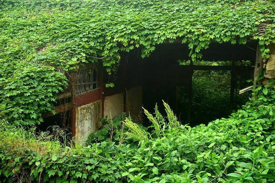 Herboristeria Herbasana Canals: Pueblo abandonado