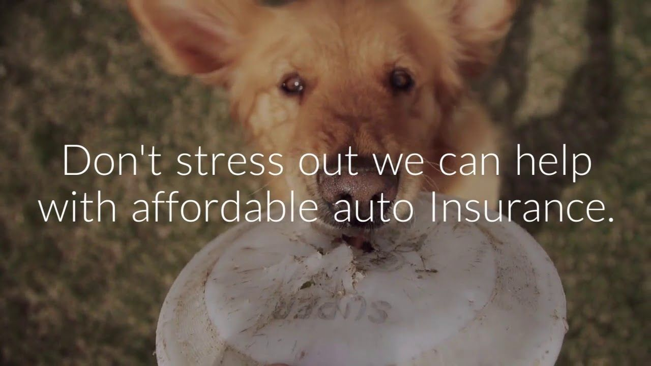Affordable auto insurance chattanooga tn car insurance