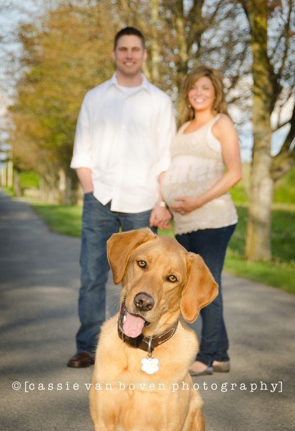 Pin On Maternity Pregnancy Pictures