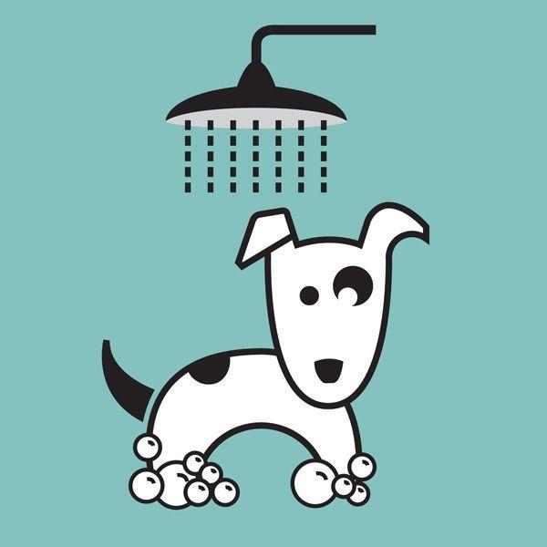 Spot Takes A Bath Peluqueria De Perros Bano Para Perros Amor Perruno