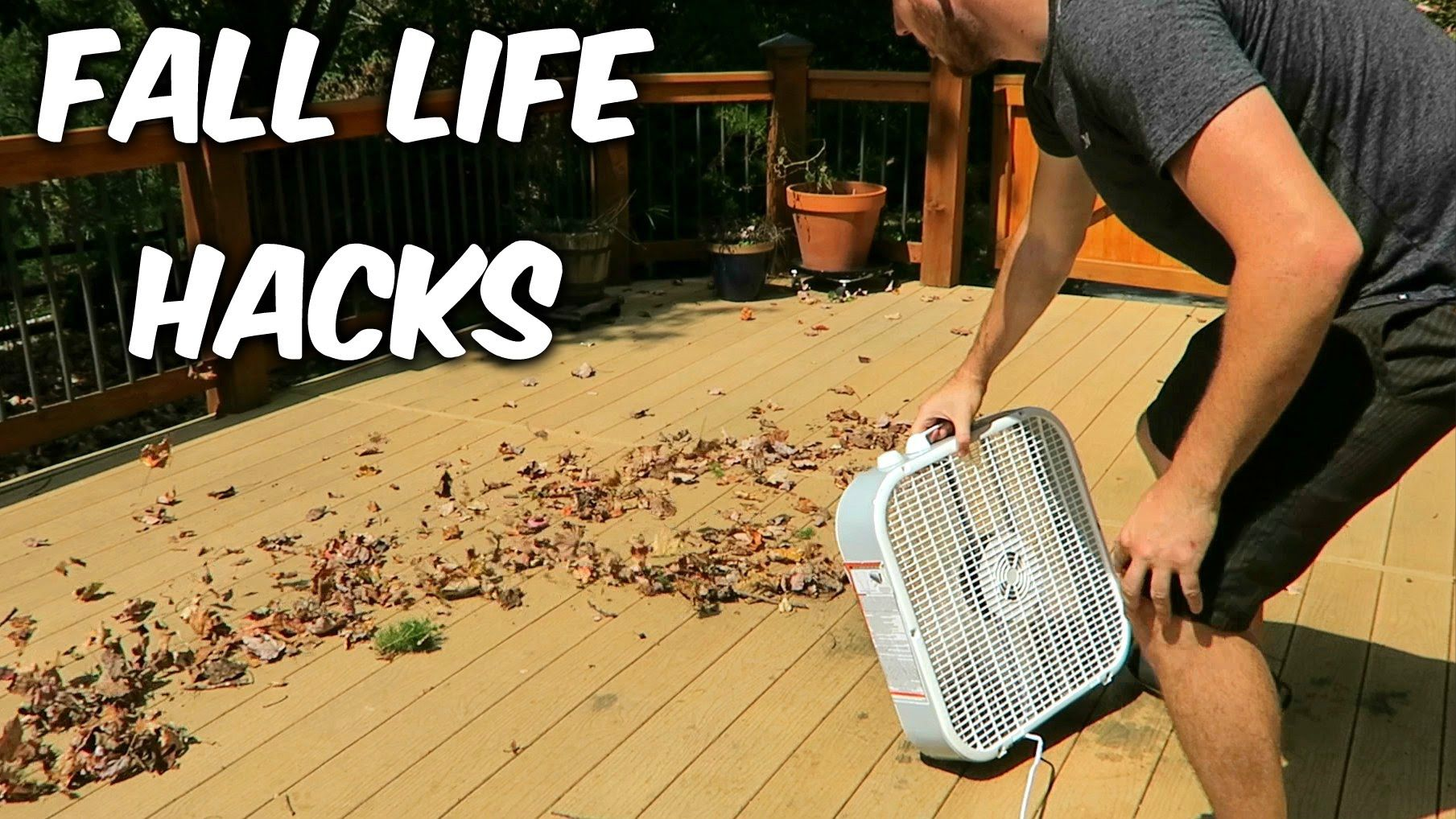 5 Fall Leaves Life Hacks Household Tips And Survival