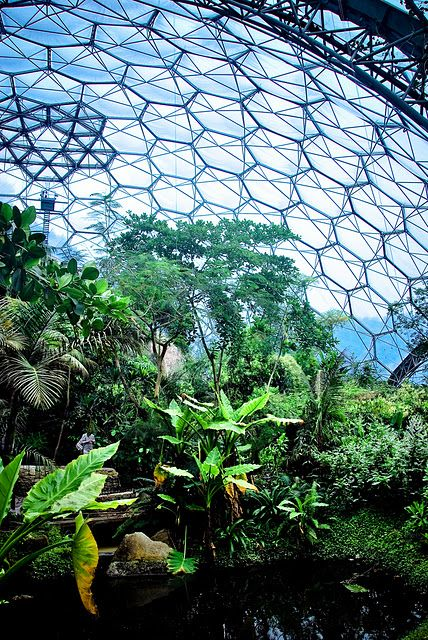 Geodesic Magic There S No Place Like Dome Eden Project Geodesic Green Architecture