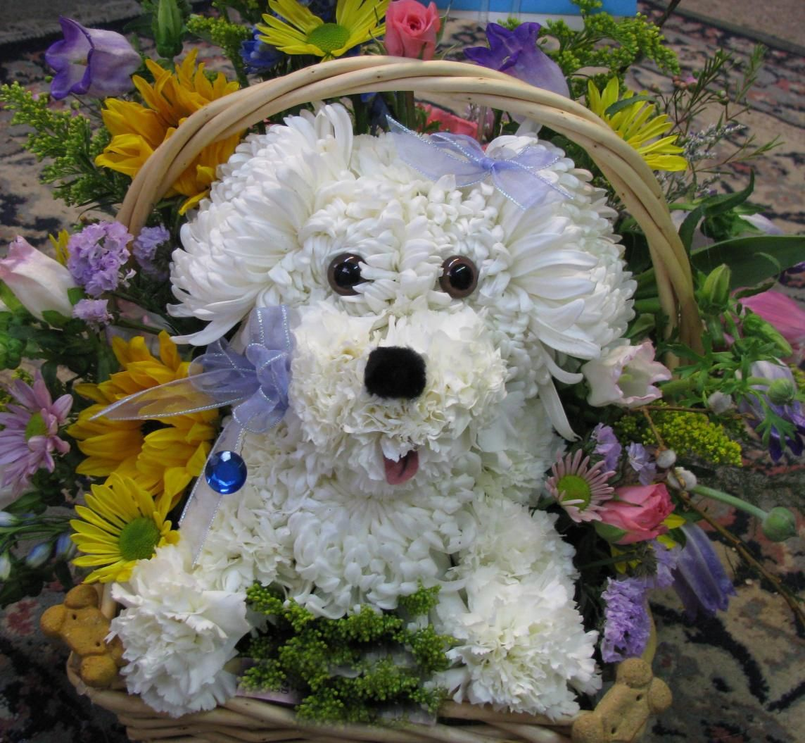 earthblossom04 Puppy flowers, Flower arrangements
