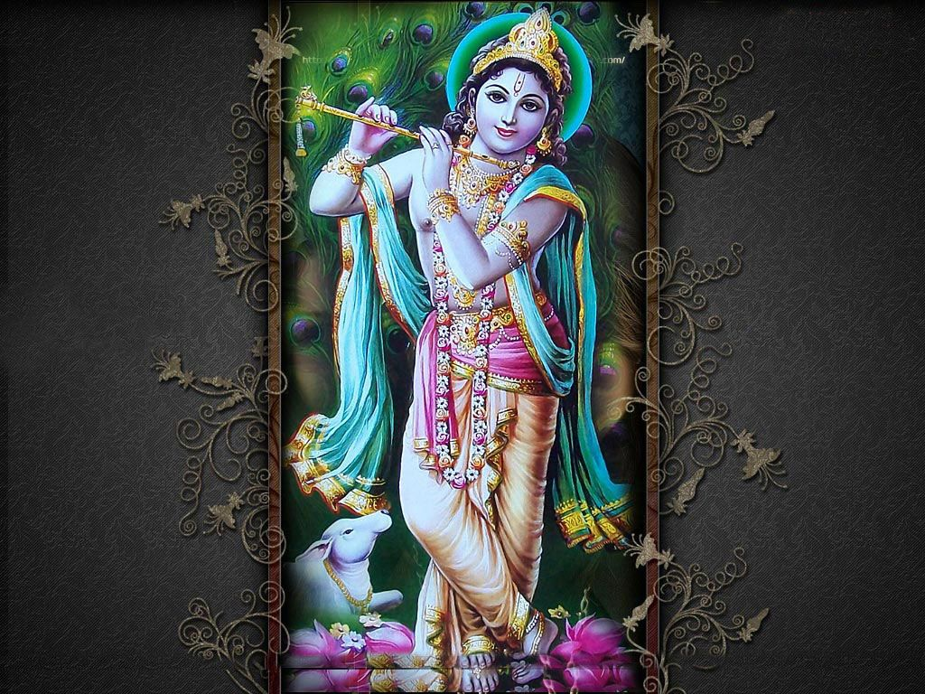 jai shri krishna desktop hd wallpaper free download krishna in