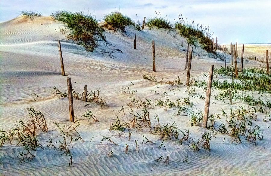 The Sands Of Obx Hdr Photograph by Greg Reed