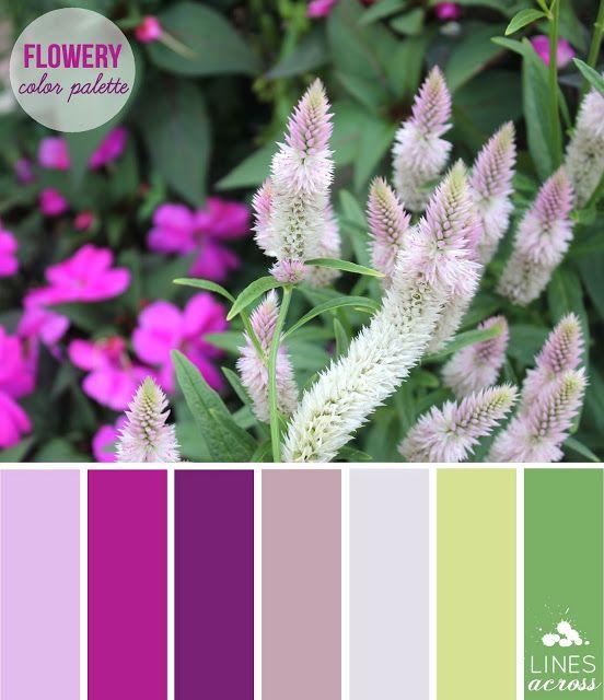 Lines Across Flowery Fuchsia Color Palette Good Color