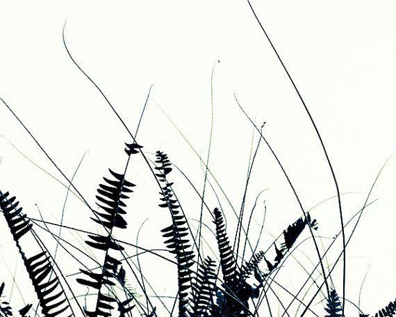 Unisex Gifts Under 25 fern print black and white art print. botanical art print