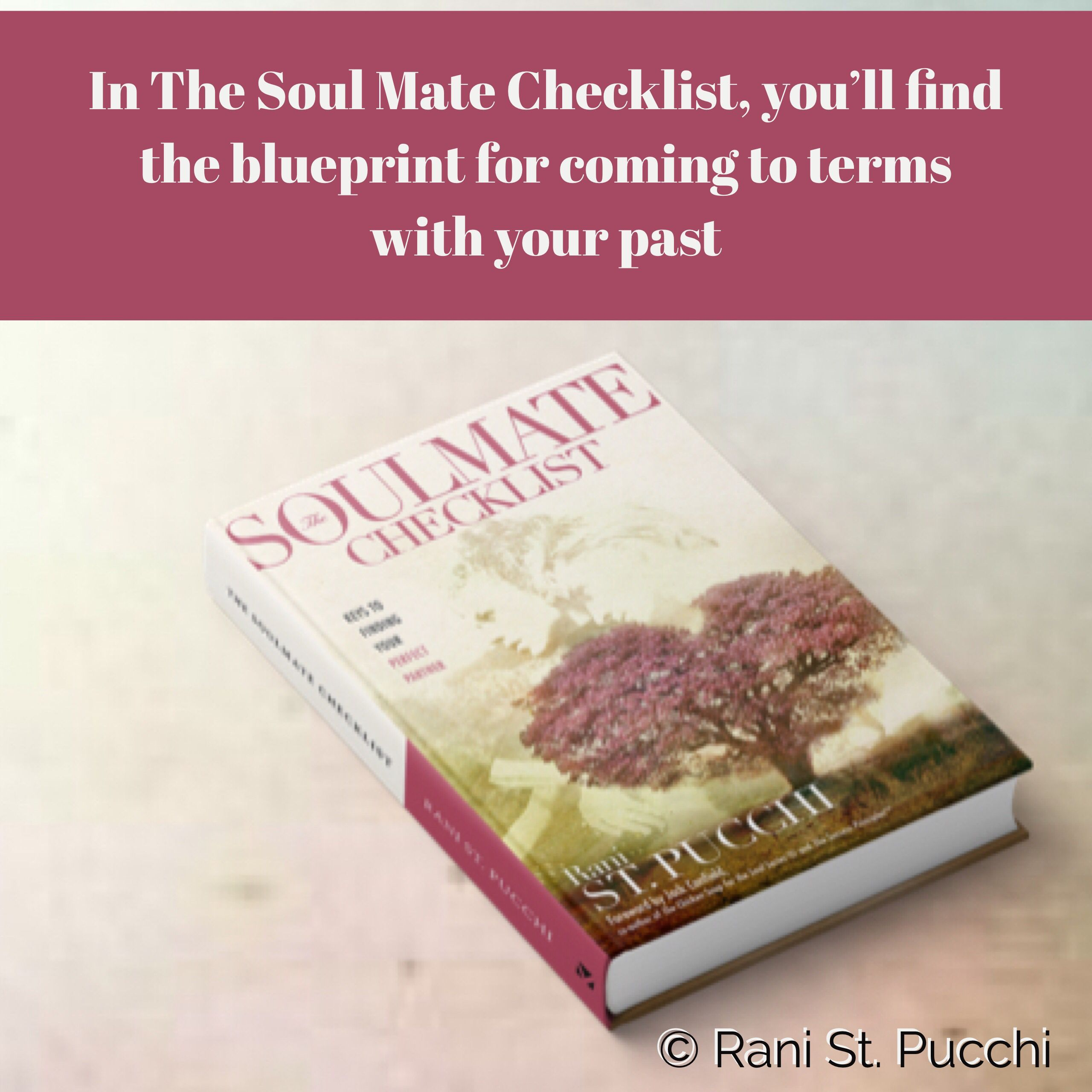 In The Soul Mate Checklist, You'll Find The Blueprint For