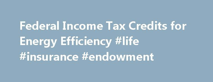 Federal Income Tax Credits for Energy Efficiency #life #insurance - annuity calculator spreadsheet