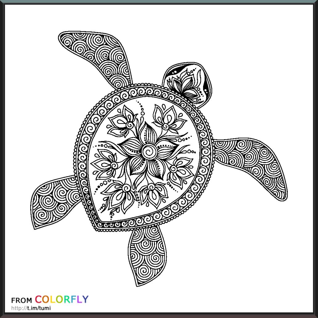 coloring colorfly animal coloring pinterest craft