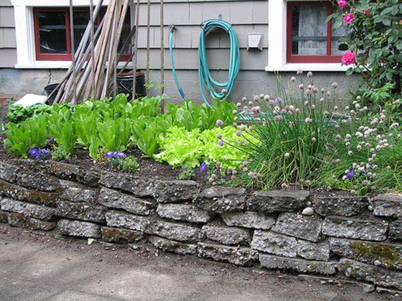 Small Vegetable Garden Ideas Small Vegetable Garden Design How