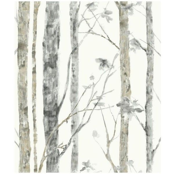 Roommates Faux Birch Trees Peel Stick Wall Decal 40 Liked On Polyvore Featuring Home Home Birch Tree Wallpaper Tree Wallpaper Peel And Stick Wallpaper
