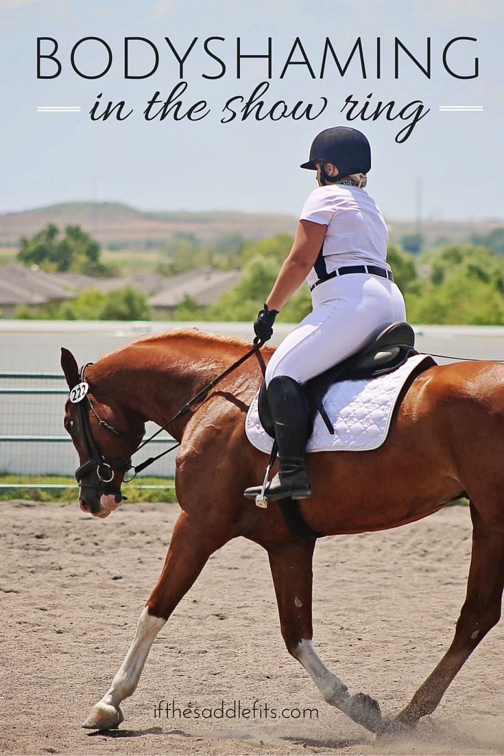BodyShaming in the show ring - its time to change the conversation -