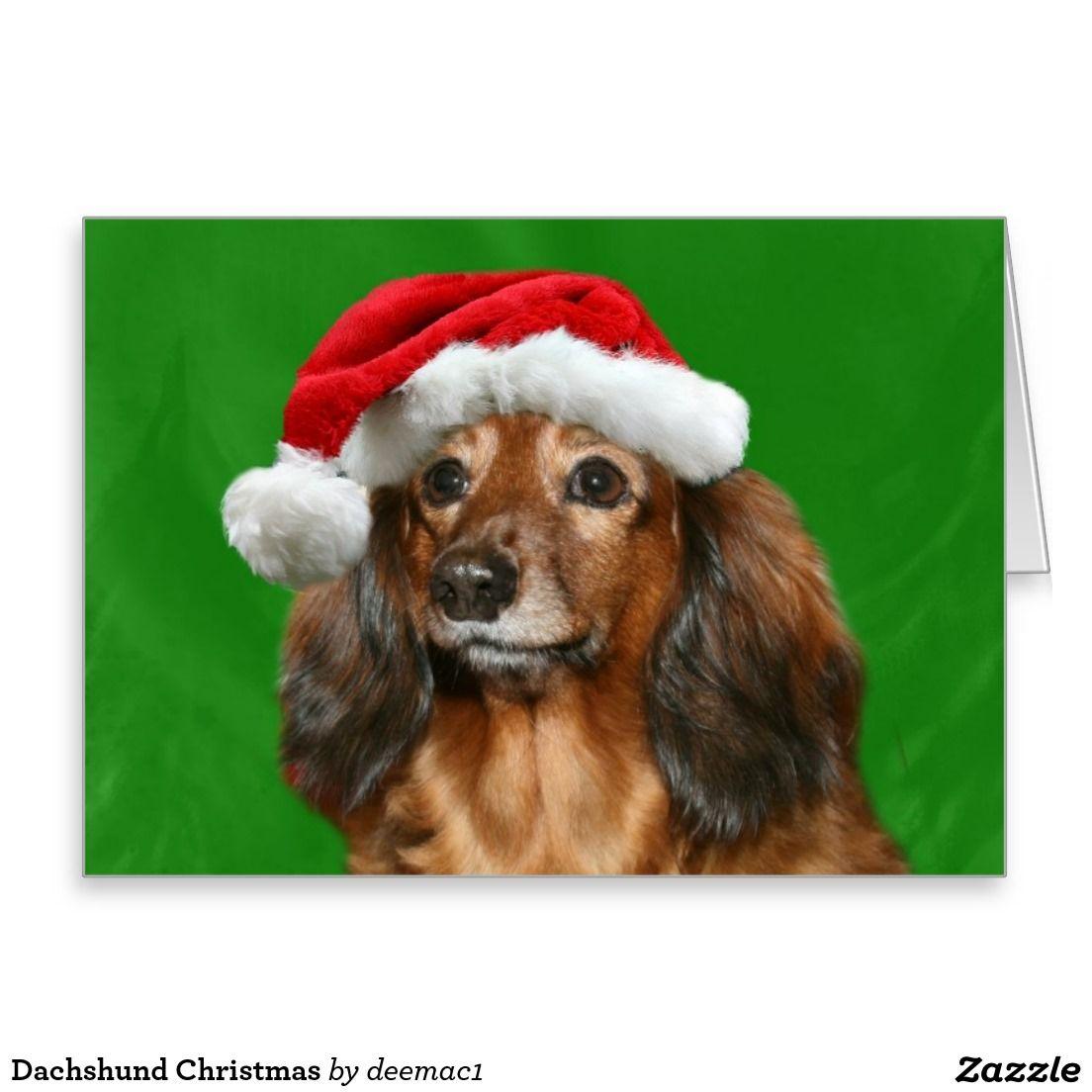 Dachshund christmas card dachshunds christmas greeting cards dachshund christmas greeting card kristyandbryce Image collections