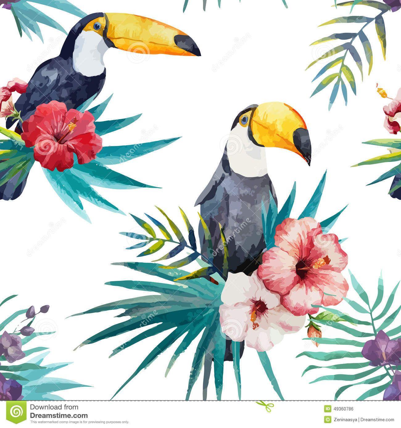 Watercolor Tropical Recherche Google Avec Images Dessin