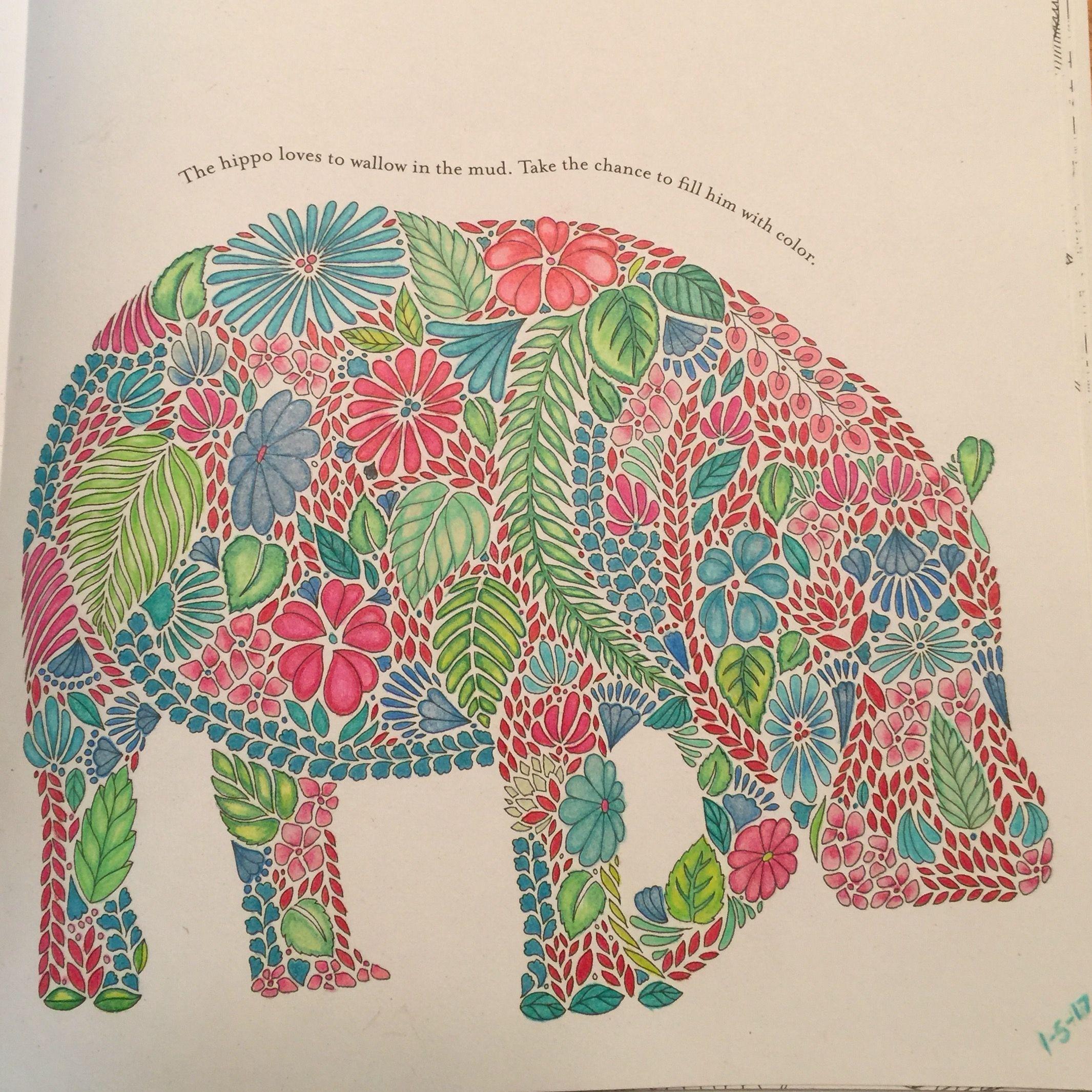 Hippo From Millie Marotta S Animal Kingdom Completed 1 5 2017 Millie Marotta Animal Kingdom Millie Marotta Coloring Books