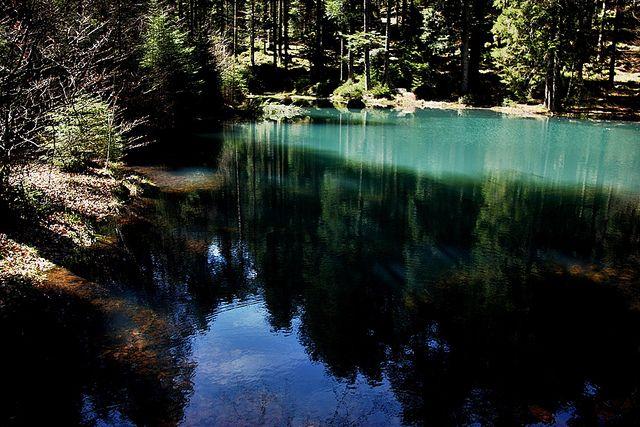 Reflection... | Flickr: Intercambio de fotos