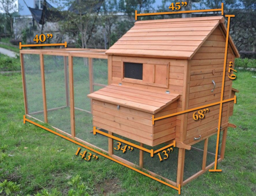 Finally found the coop i want it has a detachable wall for Poultry house plans for 100 chickens