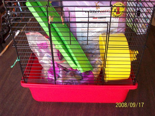 15 Hamster Cage With All Hamster Cages Hamster Cage Online Pet Store