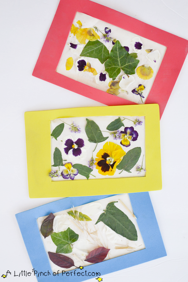 nature craft and reusable frame for kids the peel and