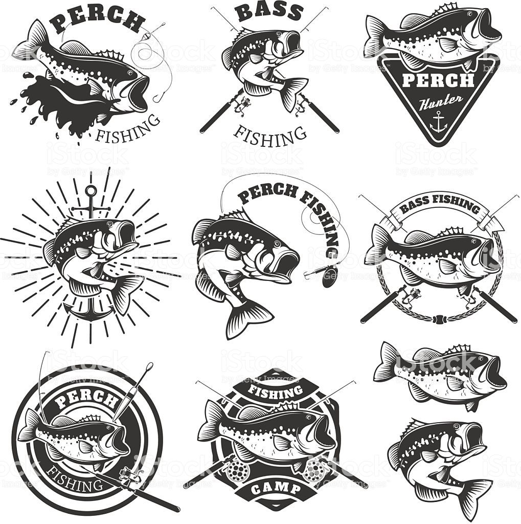 Bass fishing labels. Perch fish. Emblems templates for fishing club ...