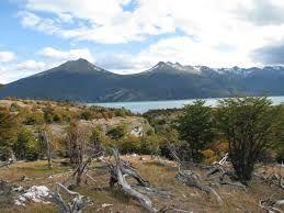 Parque Nacional Yendegaia. Provincia de Tierra del Fuego y Antártica Chilena.