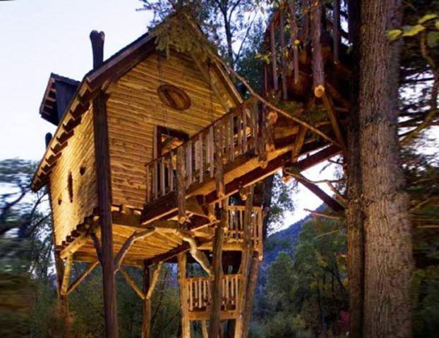 Foto: A treehouse on stilts.