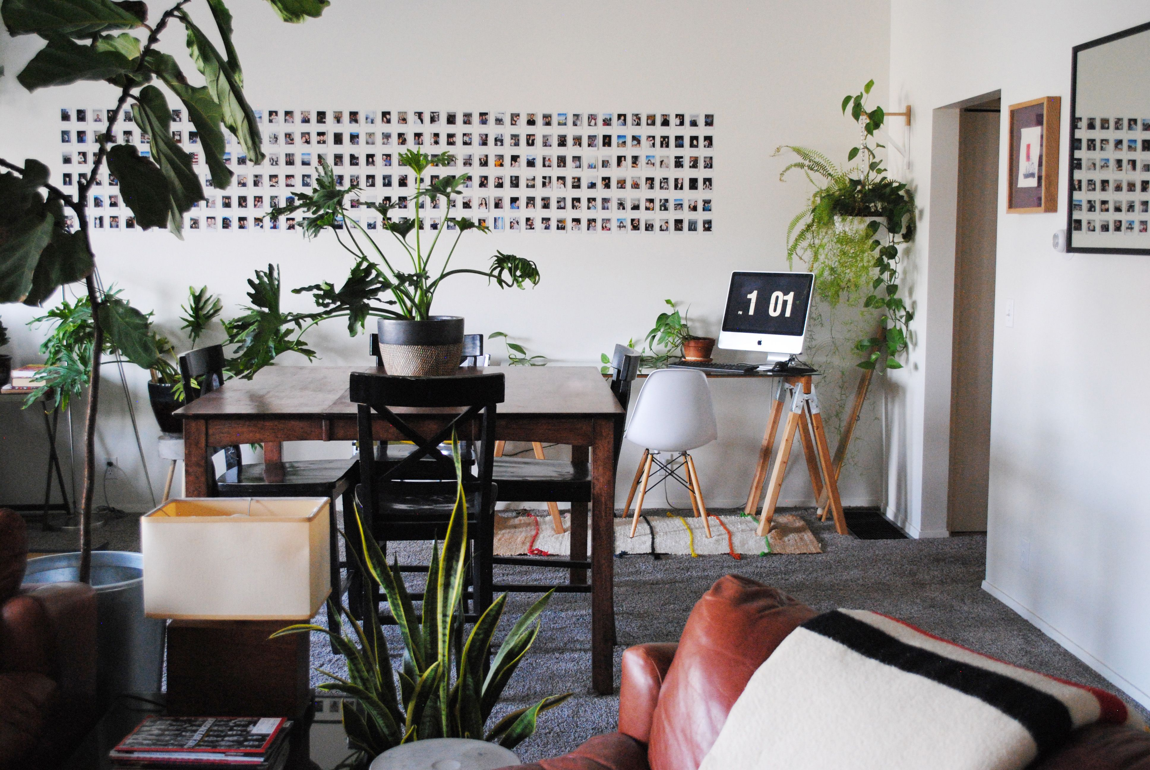 This salt lake city studio is full of plants and polaroids home