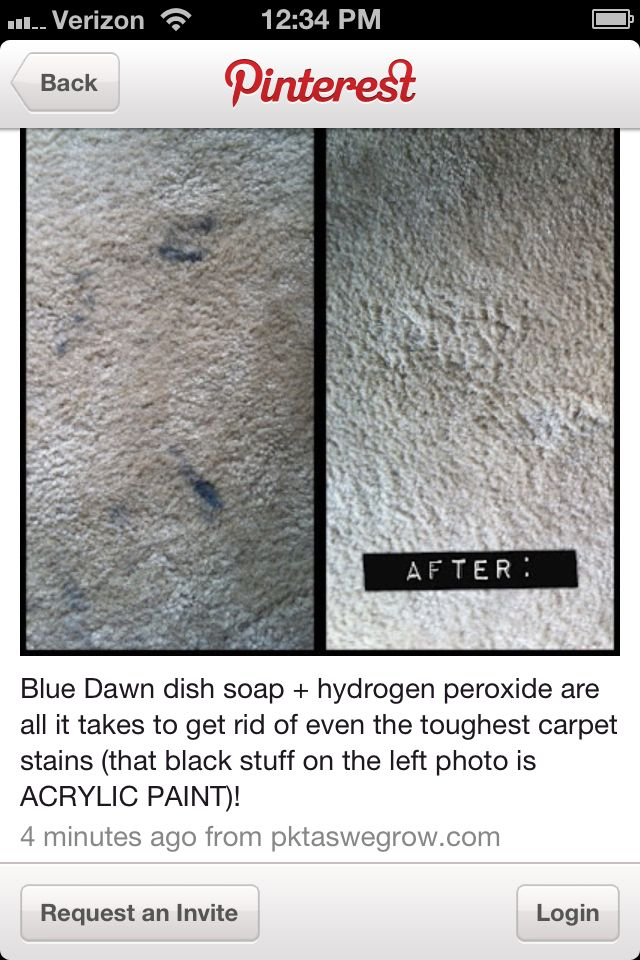 How To Remove Stains From Carpet Home Cleaning