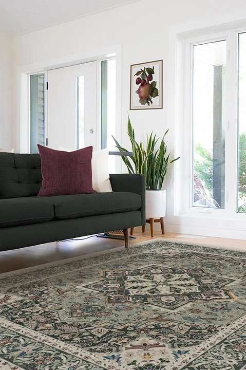 Hendesi Heriz Sage Rug Accent Rugs Living Room Dark Green Couches Rugs