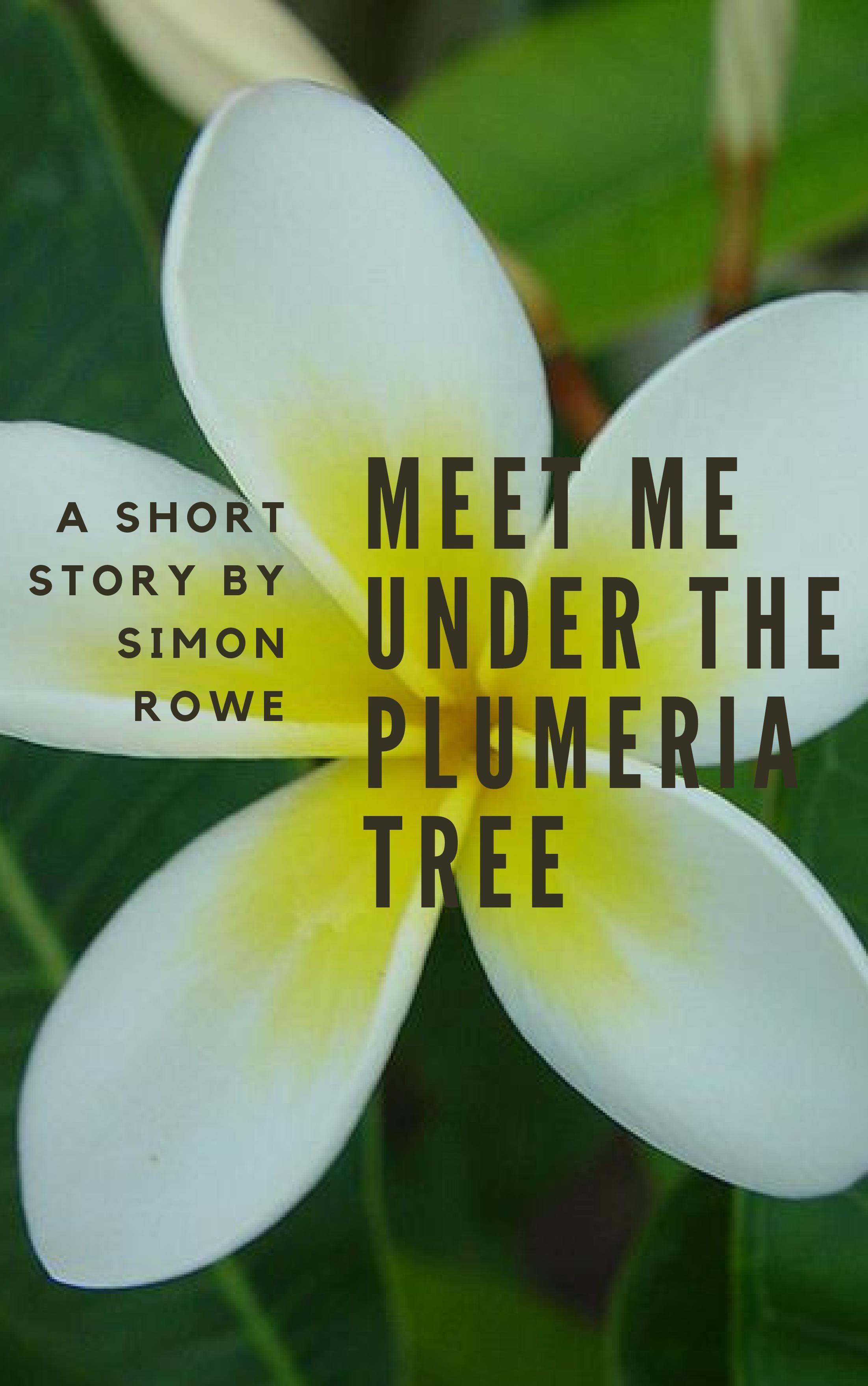 vietnam war short stories