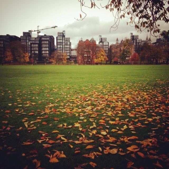 Umega Lettings | Edinburgh, Let it be, Property for rent