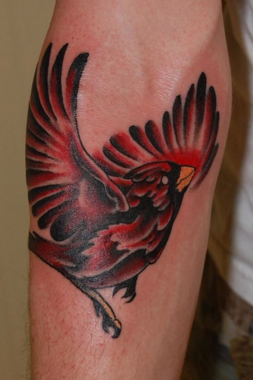 Cardinal #Cardinal Tattoo #ink #tattoo #Bv #Peter Ferrell ...