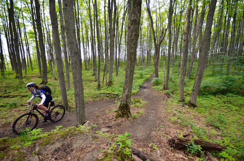6 Canadian Mountain Bike Towns You Should Visit Mountain Biking