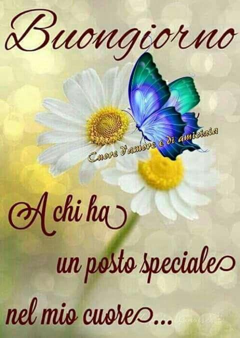Buongiorno e buon weekend buongiorno good morning for Messaggi di buongiorno divertenti