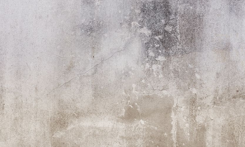 Pin On Walls Plaster Paint Finishes