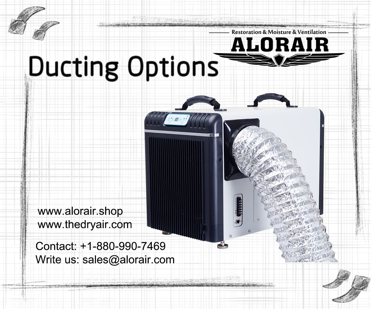 Alorair® Sentinel HDi90 Basement & Crawl Space